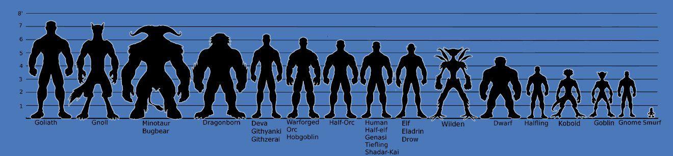race size chart also bogasrdenstaging rh