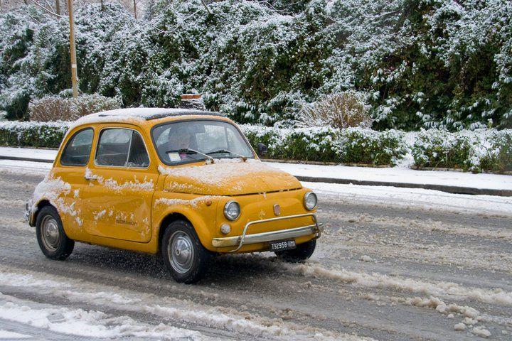 Roma Vintage Fiat 500 With Images Fiat 500 Fiat 500 Vintage