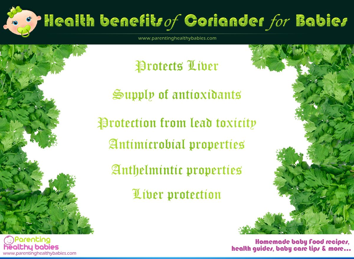 health benefits of coriander or cilantro for babies | health