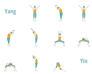 yin yoga sequences  foundational sequences for yoga