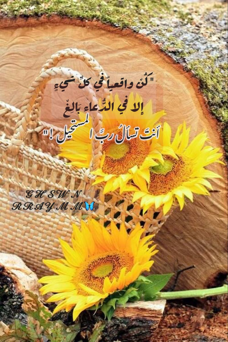 Pin De Nasma Bouhafsi Em تنمية الذات Em 2021