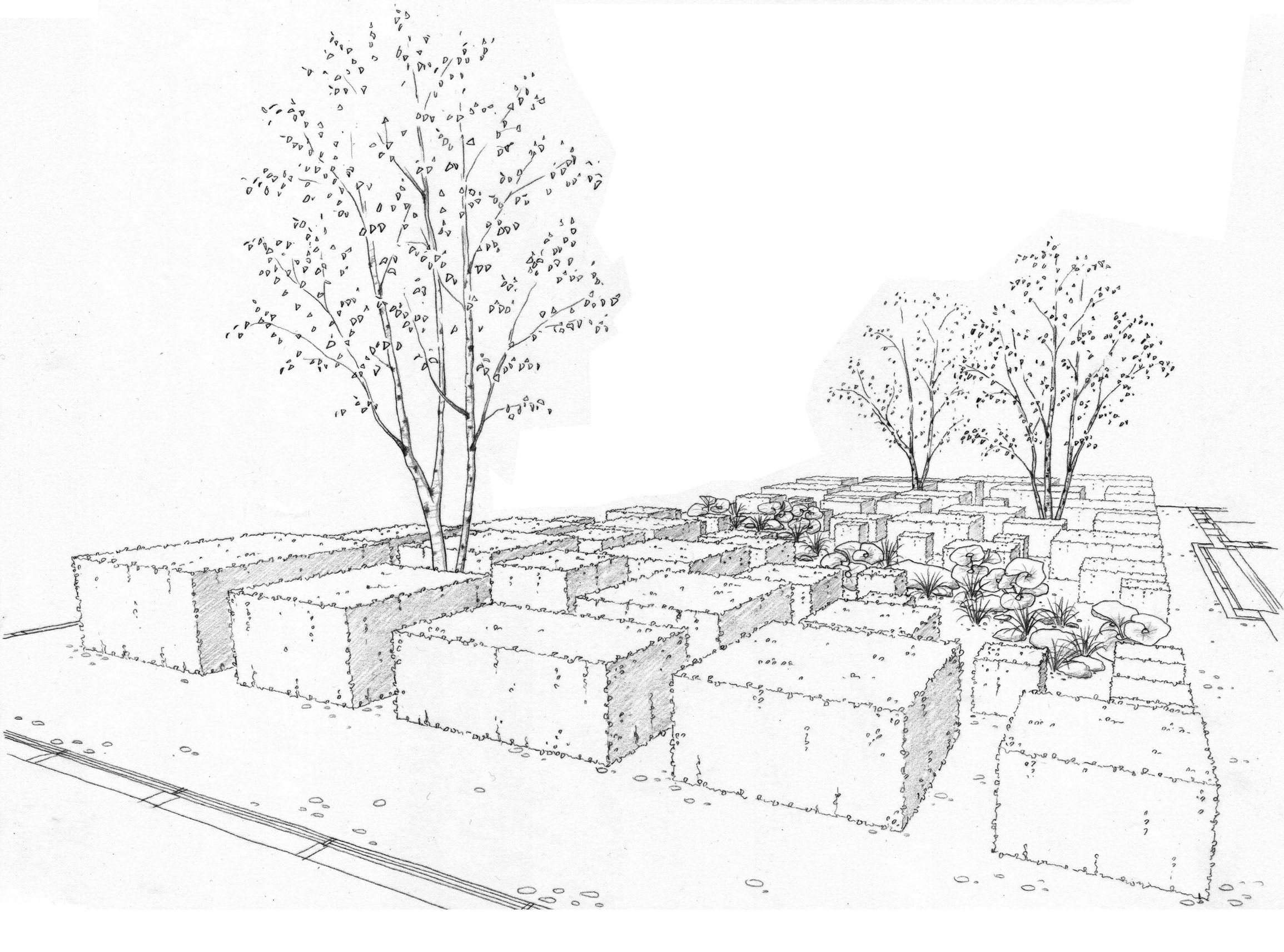 Landscape Architecture Perspective Drawings 61 best renate's drawings images on pinterest | landscape drawings