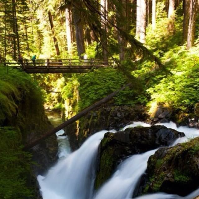 Hike to Bagby Hot Springs | Oregon, my home state | Bagby hot