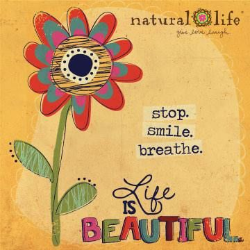 Hoy acabamos el día pensando en que la vida es maravillosa, y que para apreciarlo solo necesitas parar, respirar y sonreír. Y en ese momento serás feliz #mensajepositivo