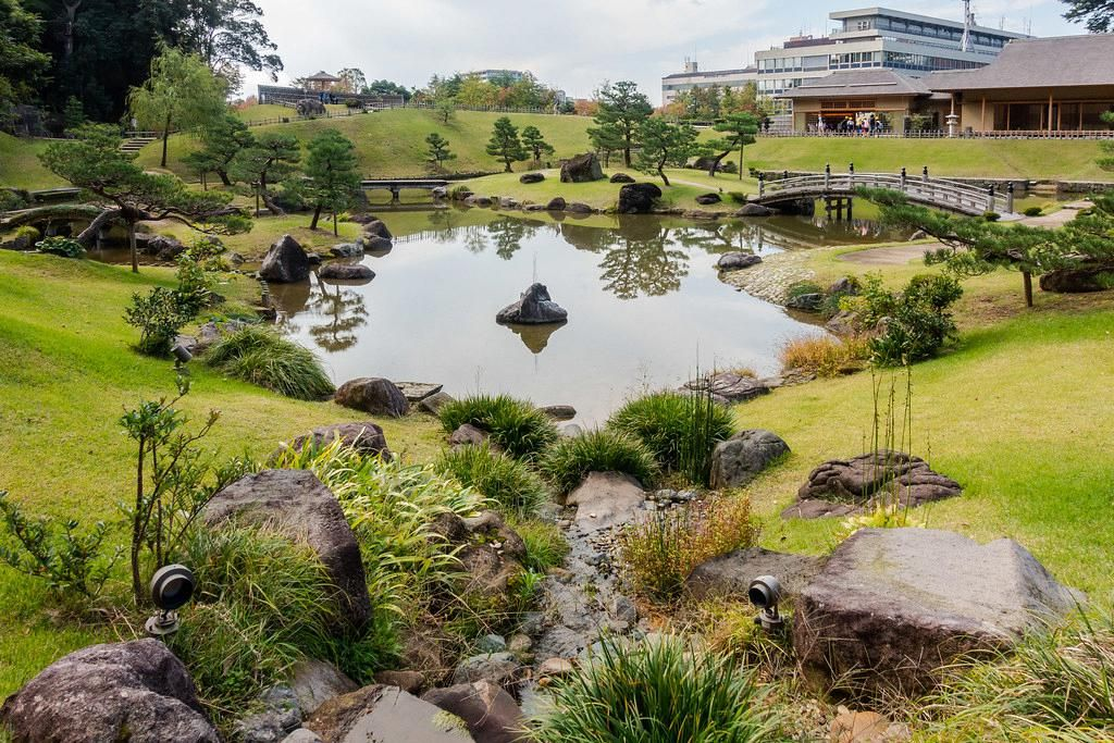 Garden maintenance ornamental grasses
