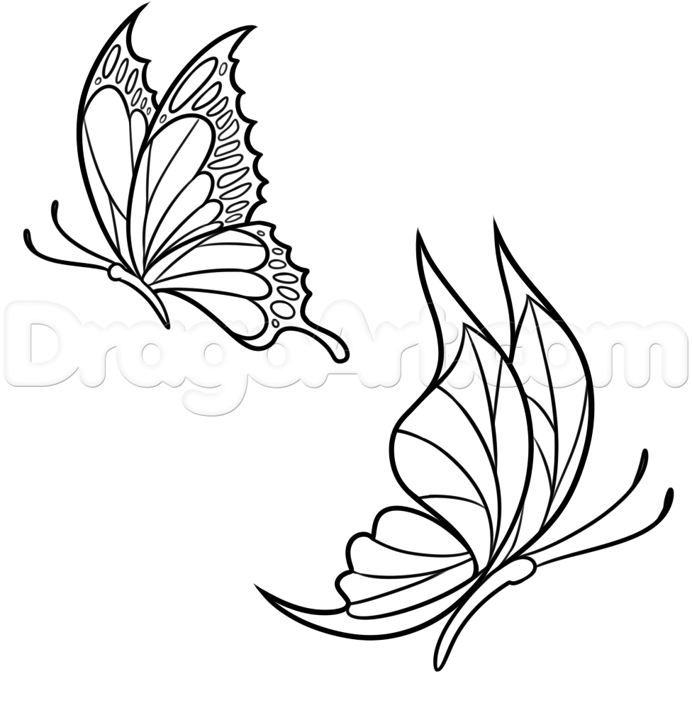 how to draw spring butterflies  step by step  bugs Flower Outline Clip Art Flower Drawings Clip Art