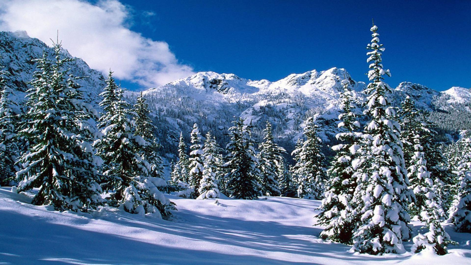 Snow Scenes Desktop Background Alpine See Wildnis Washington An Winter Wallpaper Winter Landscape Winter Landscape Photography