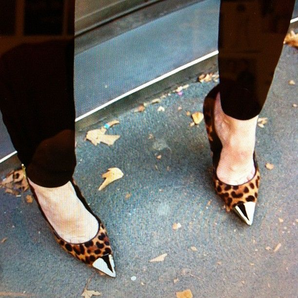 Combining two of our fave trends - leopard can toe-cap shoes!