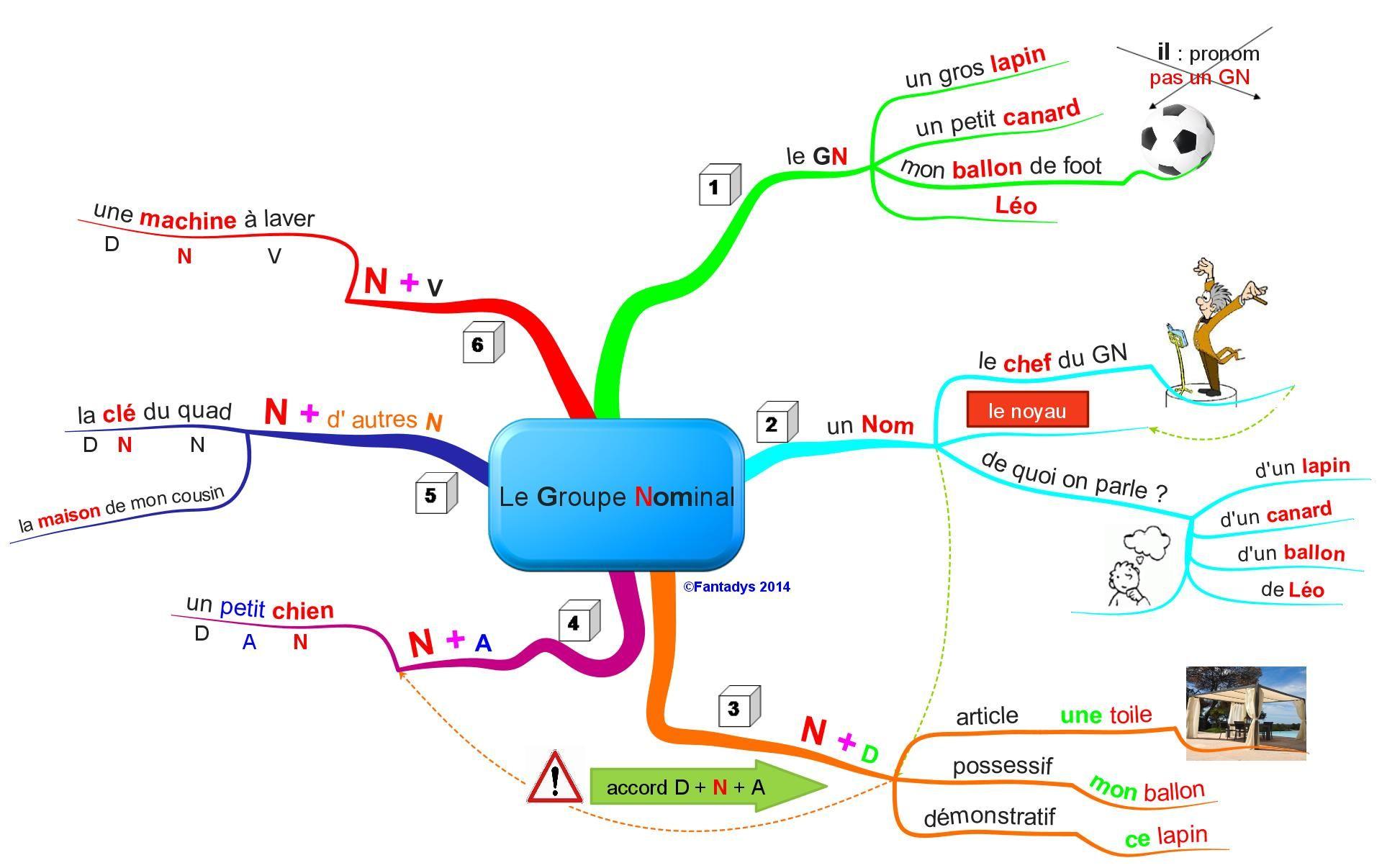 carte heuristique groupe nominal