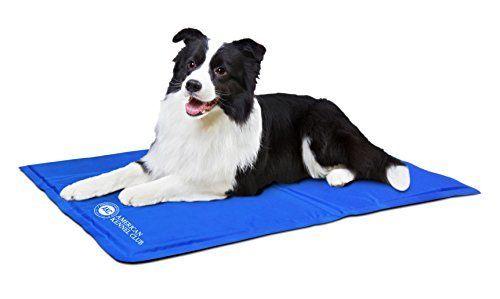 Amazon Com American Kennel Club Akc 610 Blue Pet Cooling Mat Pet