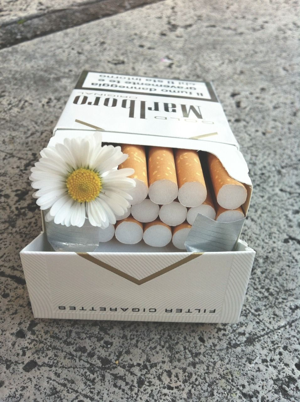 I love how it has Augustus Waters cigarettes and Alaska Young's white daisy