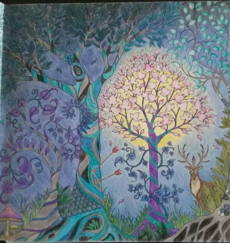 Johanna Basford Enchanted Forest 2nd Page Of 2 Spread Colored