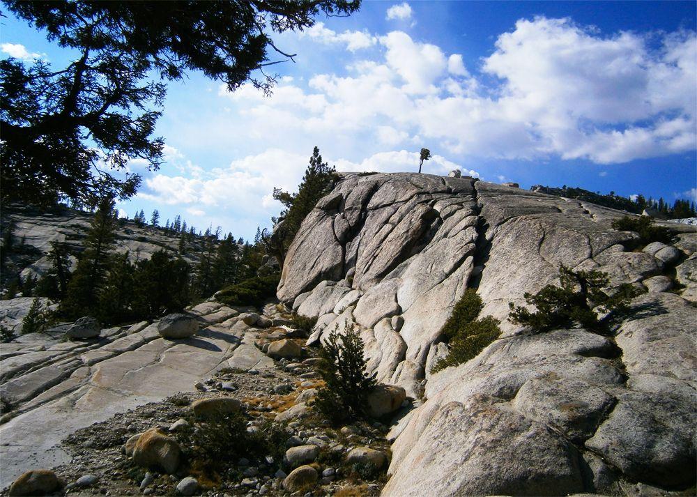 Yosemite National Park is een van de mooiste Nationale Parken van de Verenigde Staten. Bezoek het tijdens een Amerika rondreis in het zuidwesten.