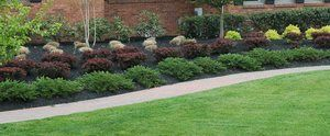 Commercial Landcape Maintenance Services With Images Landscape