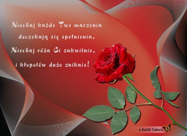 E Kartka Roza Kartki Kwiaty E Kartki Tamara