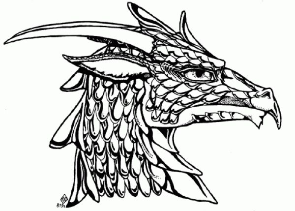 Amazing Gorgeous dragon head coloring page - http://coloring.alifiah ...