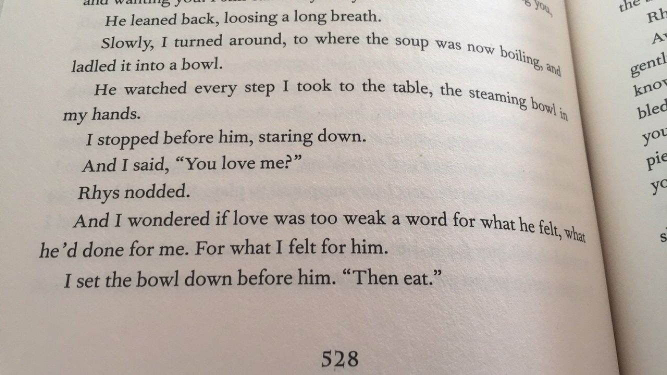 Squee The Soup Scene From Acomaf With Images Sarah J Sarah J