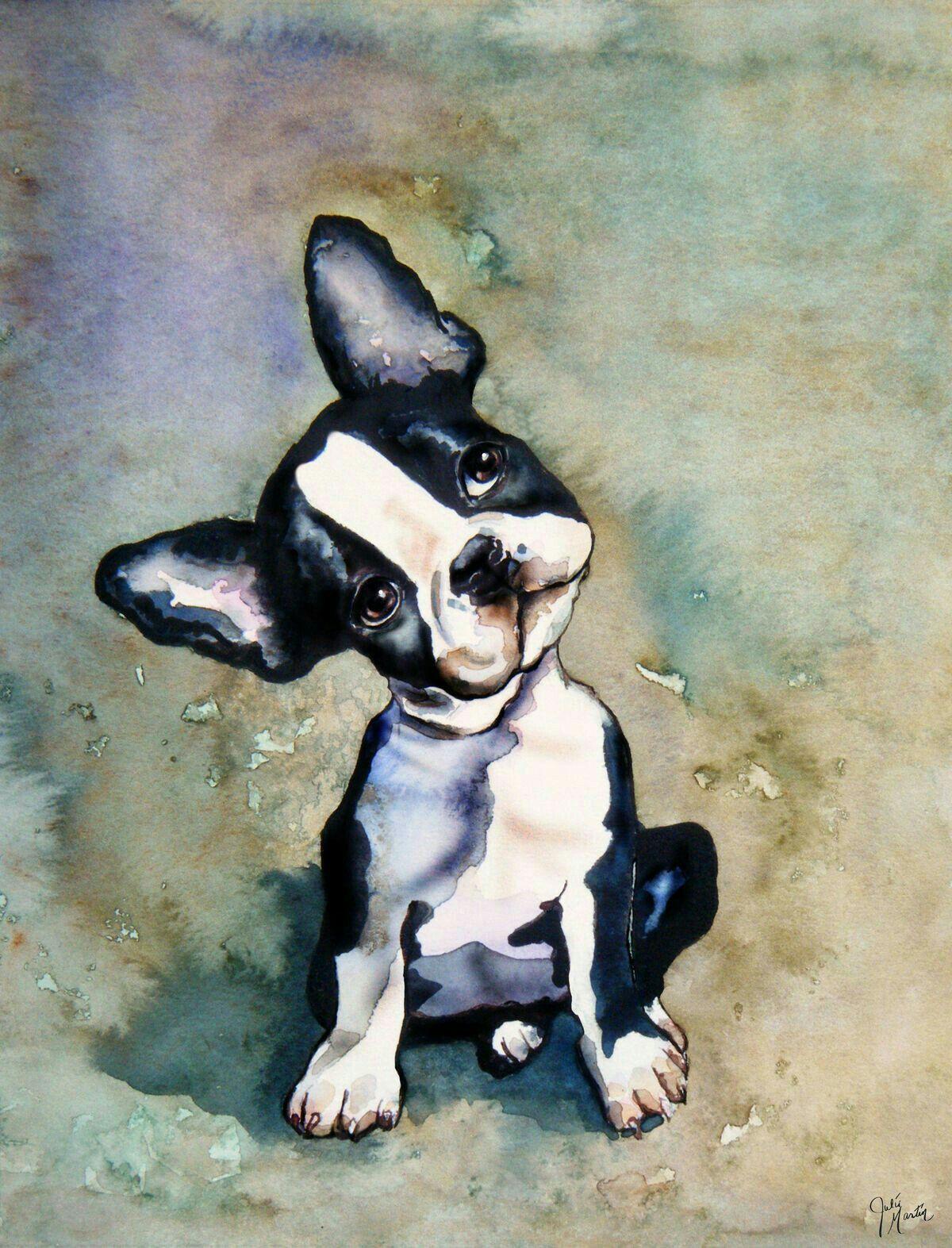 Pin By Cassandra N On Puppies In 2019 Boston Terrier Boston