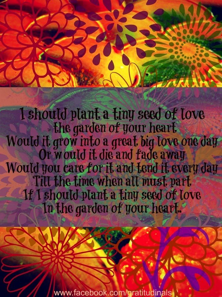 Love Garden Quote Via WwwFacebookgratitudinals GARDEN QUOTES Delectable Garden Love Quotes