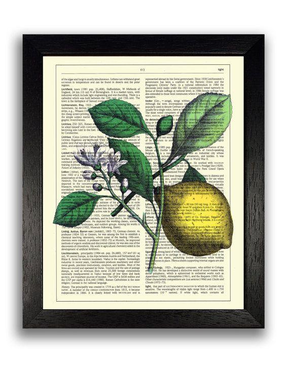 Wall Decor Vintage Lemon Art Print Fruit Wall Art Kitchen Lovers ...