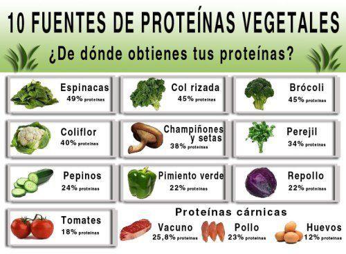Una dieta vegetariana (aún incluyendo huevos y lacteos