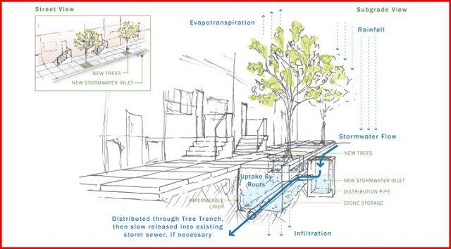 Biokipos Parteria Zartinieres Aporrohs Kai Sylloghs Neroy Bioswales Stormwater Green Street Water Department