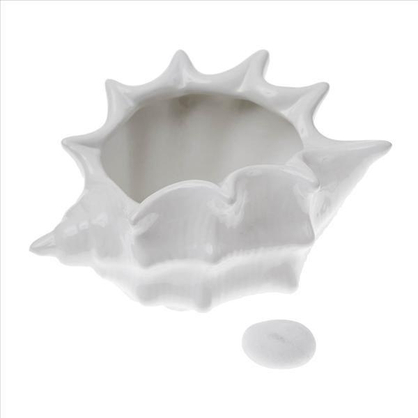 Muszla z ceramiki