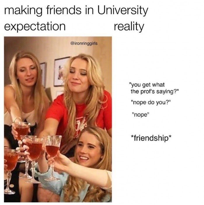 20 Memes Those Suffering In College Will Understand College Jokes Freshman Memes College Memes