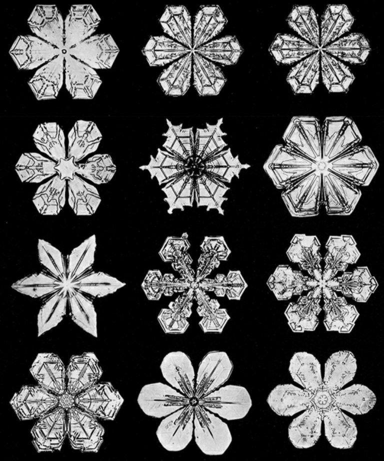 The Haunting Beauty Of Snowflakes Wilson Bentley S Pioneering 19th Century Photomicroscopy Of Snow Crystals Brain Snow Crystal Snowflake Bentley Snowflakes