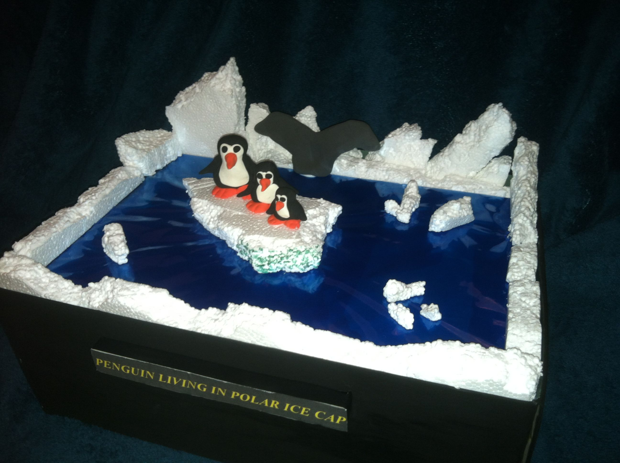 my daughters diorama on penguins childrens art