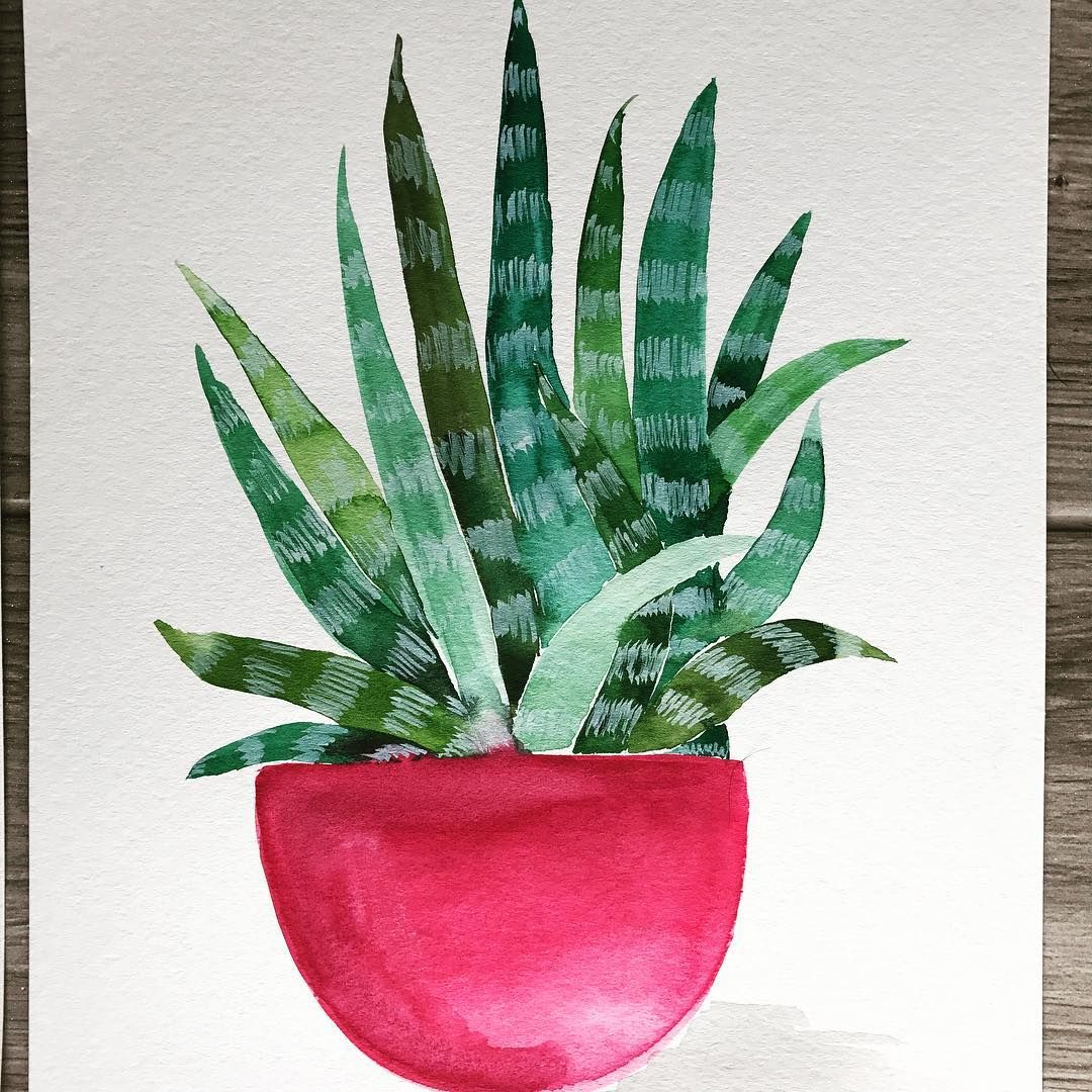 Another succulent pot 😁🌵🌿 I can't decide if this pot needs decoration. What do y'all think???  •  •  •  •   #watercolor #artoftheday #succulent #succulents #love #bohemian #boho #brushcalligraphy #diy #bohochic #design #watercolorpainting #homedecor #instaartist #floralwatercolor #botanical  #cacti #makersgonnamake #pricklypearpaints #prettythings #sanclemente #orangecounty #artistsoninstagram #summer #calledtocreate #pot