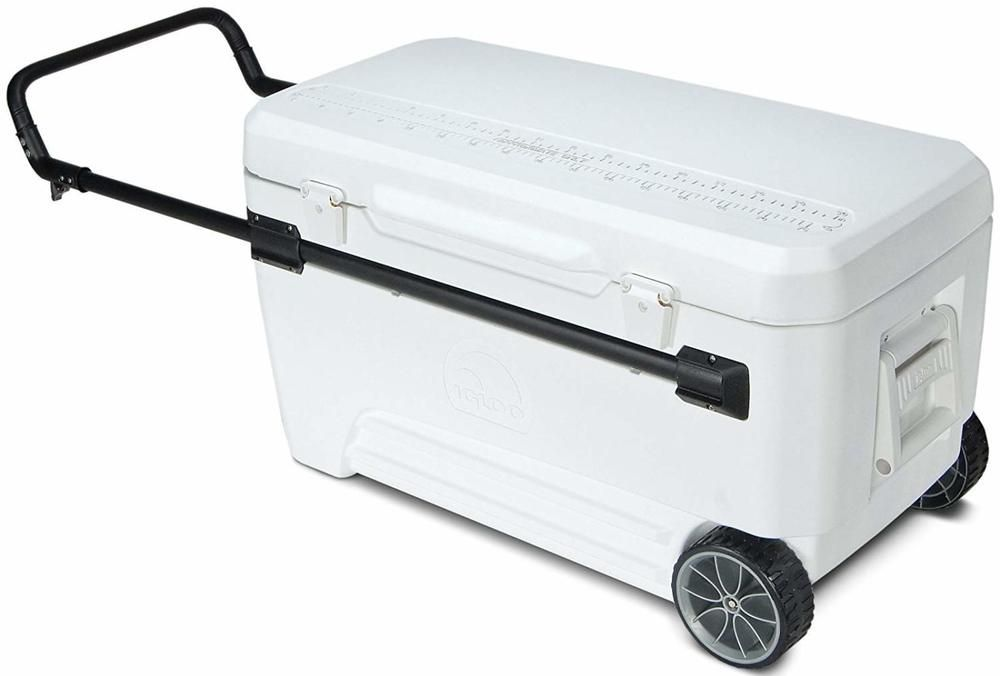 Travel Performance Cooler 36 Quart Cup Holder Molded Camping Trip Tailgate Party