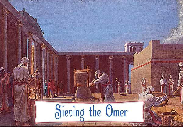 The Omer Offering | Holy temple, Third temple, Priest