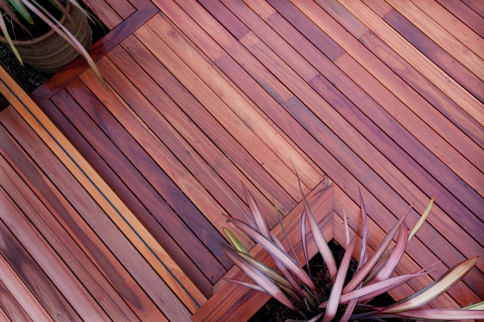 Q-Deck Lyptus Hardwood Decking After a Spring Rain Shower