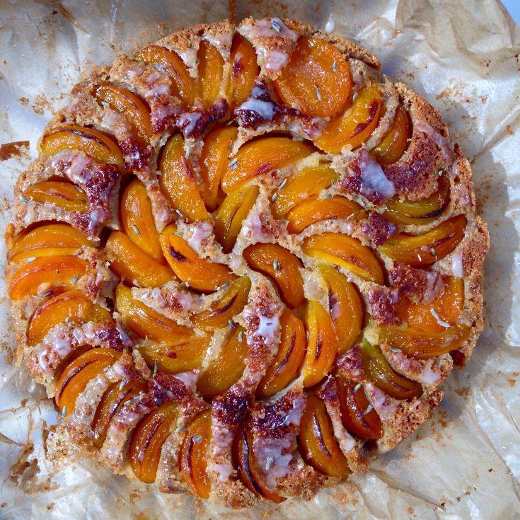 Aprikosenkuchen german apricot cake recipe apricot