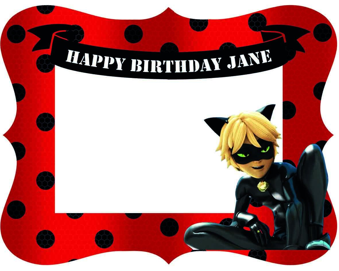 Miraculous Ladybug Cat Noir Birthday Party Photo Frame for kids ...