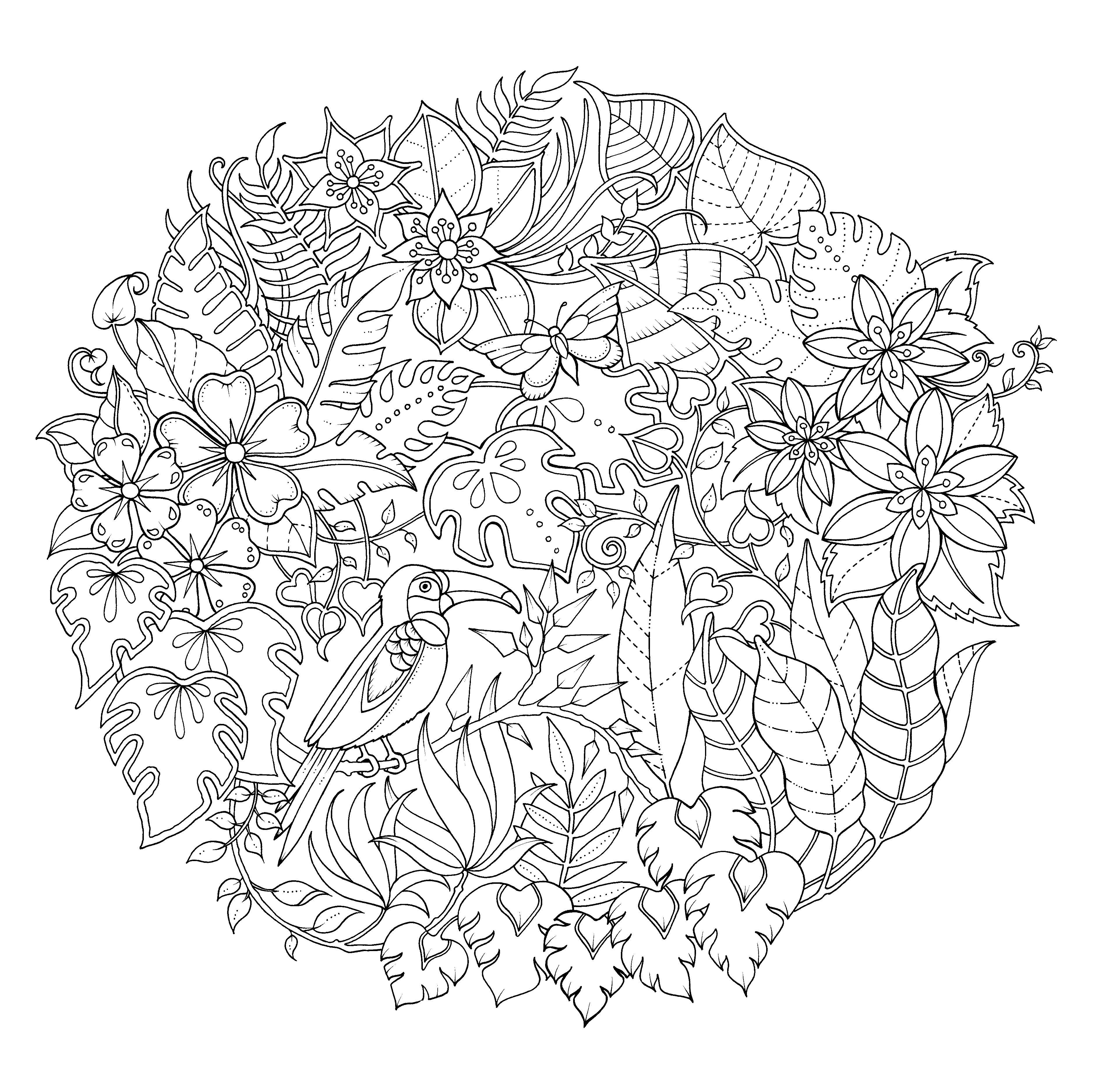 La jungla mágica\' de Johanna Basford (Urano) | random / coloriage ...