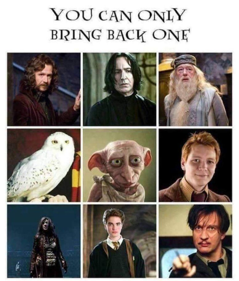 Harry Potter Honoring The Dead Book Tag