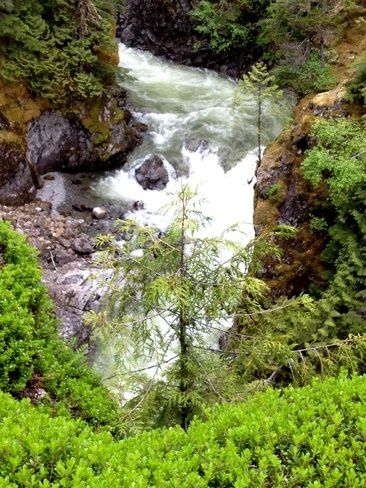 Kleanze Creek, Terrace BC Local Pinterest British columbia