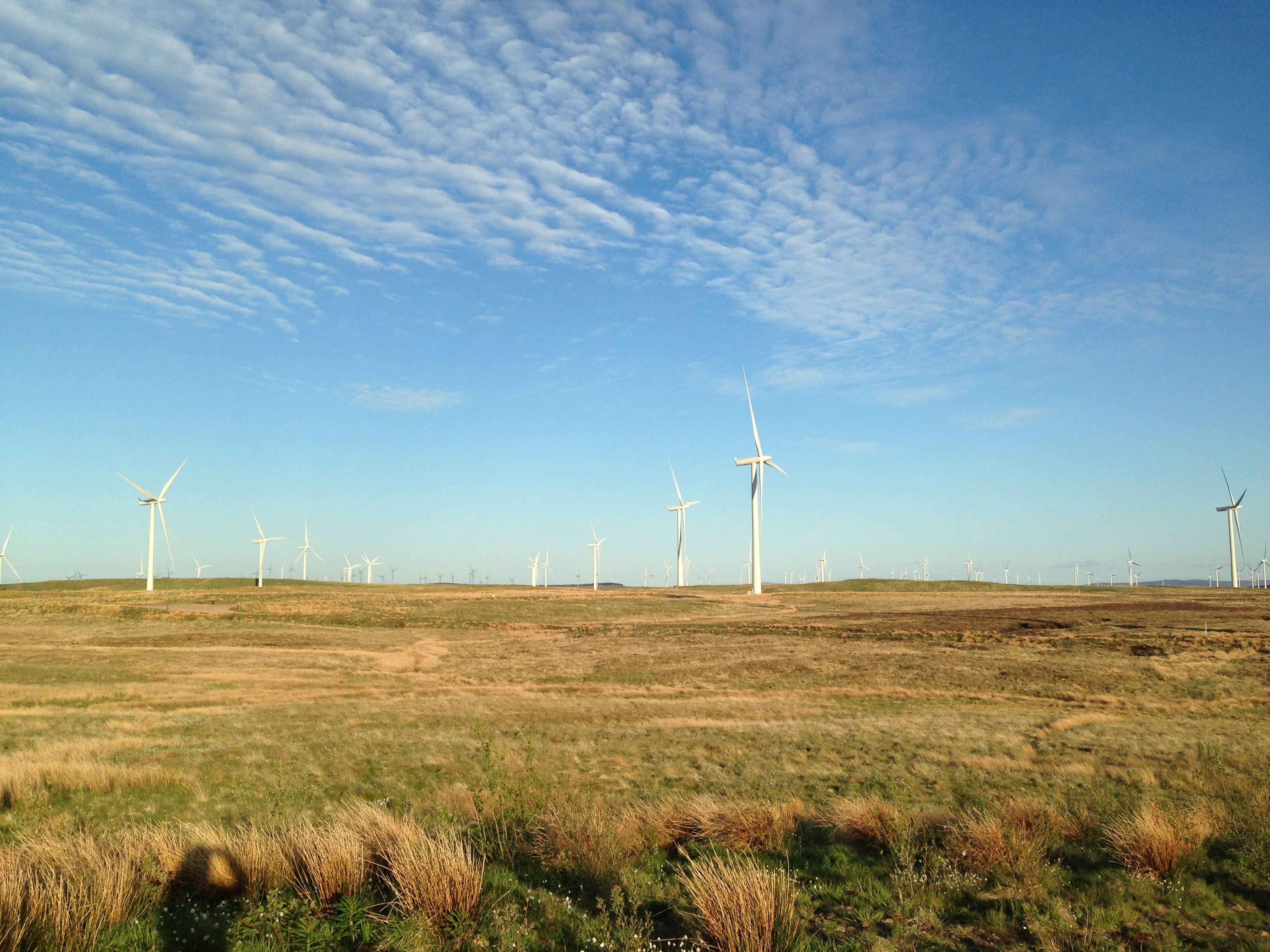 Windfarm in eaglesham