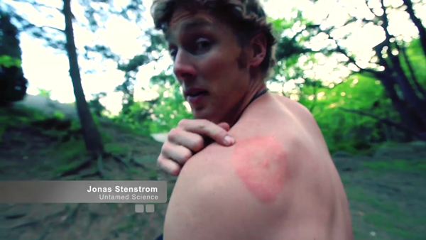 Ecology with a Twist of Lyme Disease: Untamed Science Video | OLE Community Blog