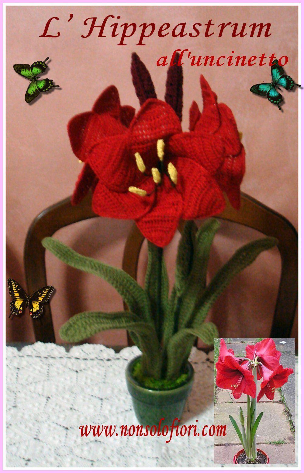 Lhippeastrum Alluncinetto Nonsolofioricom Flores Y Plantas Rose Crochet Crochetflowers Pretty Flower Diagram Crocheted Flowersflower
