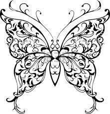 papillon en noir et blanc