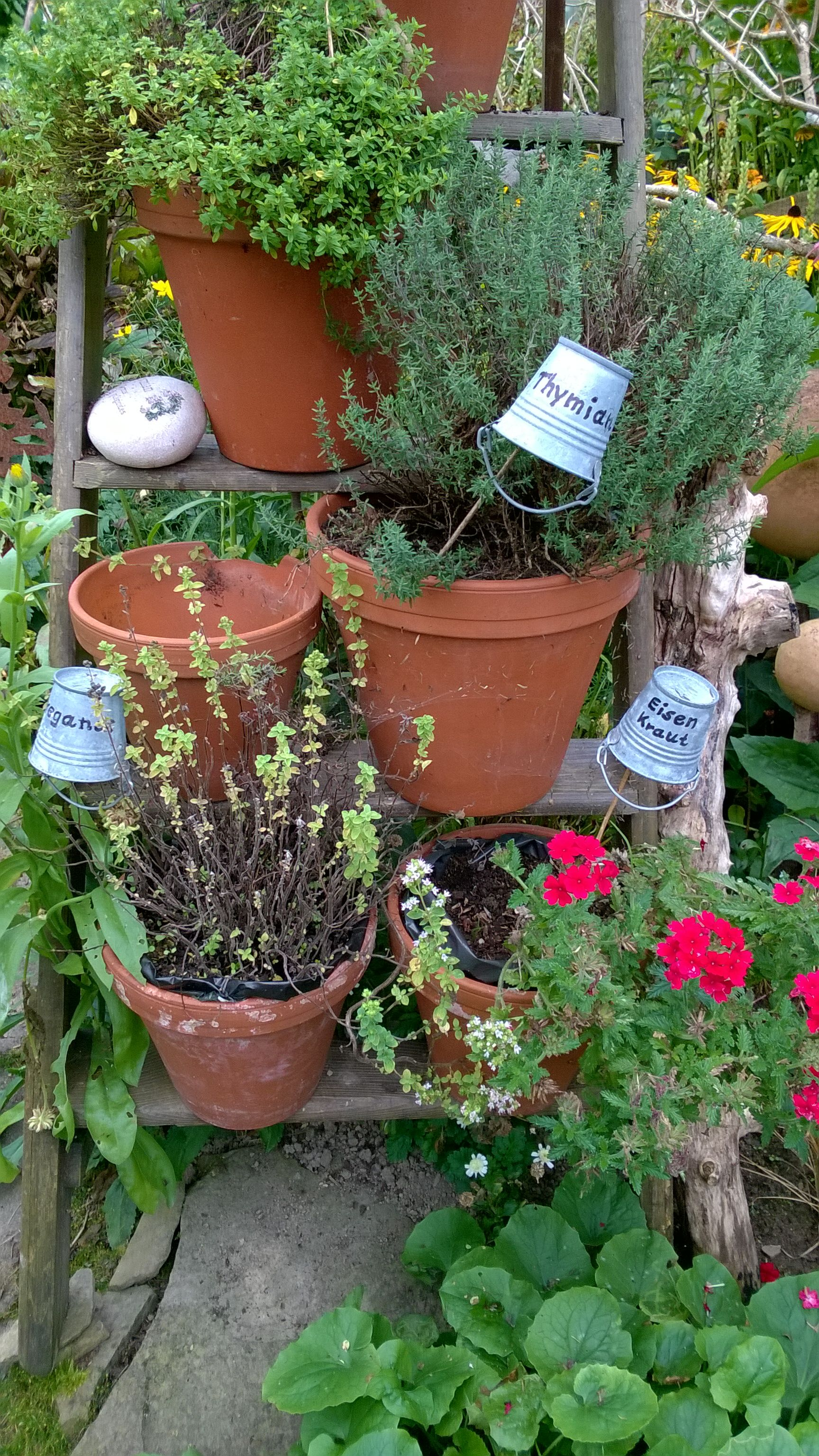 #schilder Für Kräuter, Kräutergarten, Beschriftung Kräuter, Deko Leiter  Garten, Gartenstecker DIY, Garten Ideen