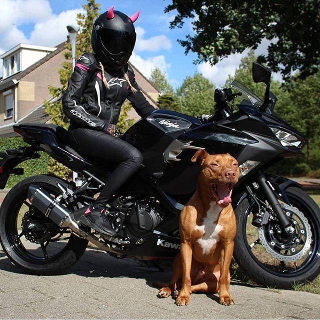 Hot Ladies On Bike! You Bet #Divine #bikelife #motorbike #bike #motorcycles #bikers #ride #girls