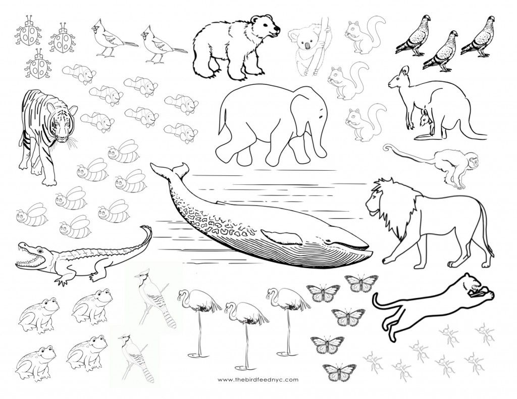 Animals Coloring And Counting Activity Sheet Coloring Pages Color Activities Free Coloring Pages
