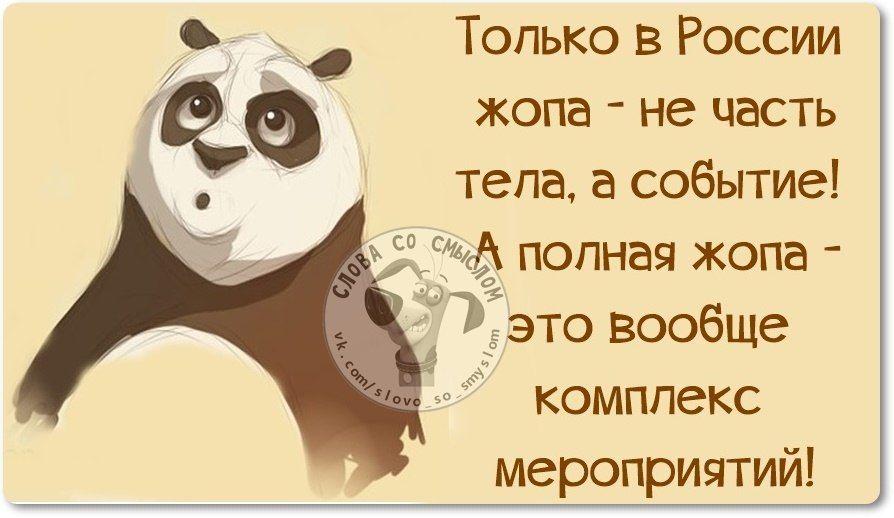 https://pp.vk.me/c7011/v7011042/553/ZBymIzOTG8o.jpg