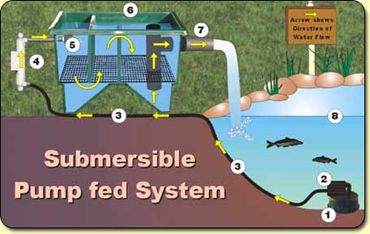 Basic filter types fish pond technic pinterest for Set up pond filter system