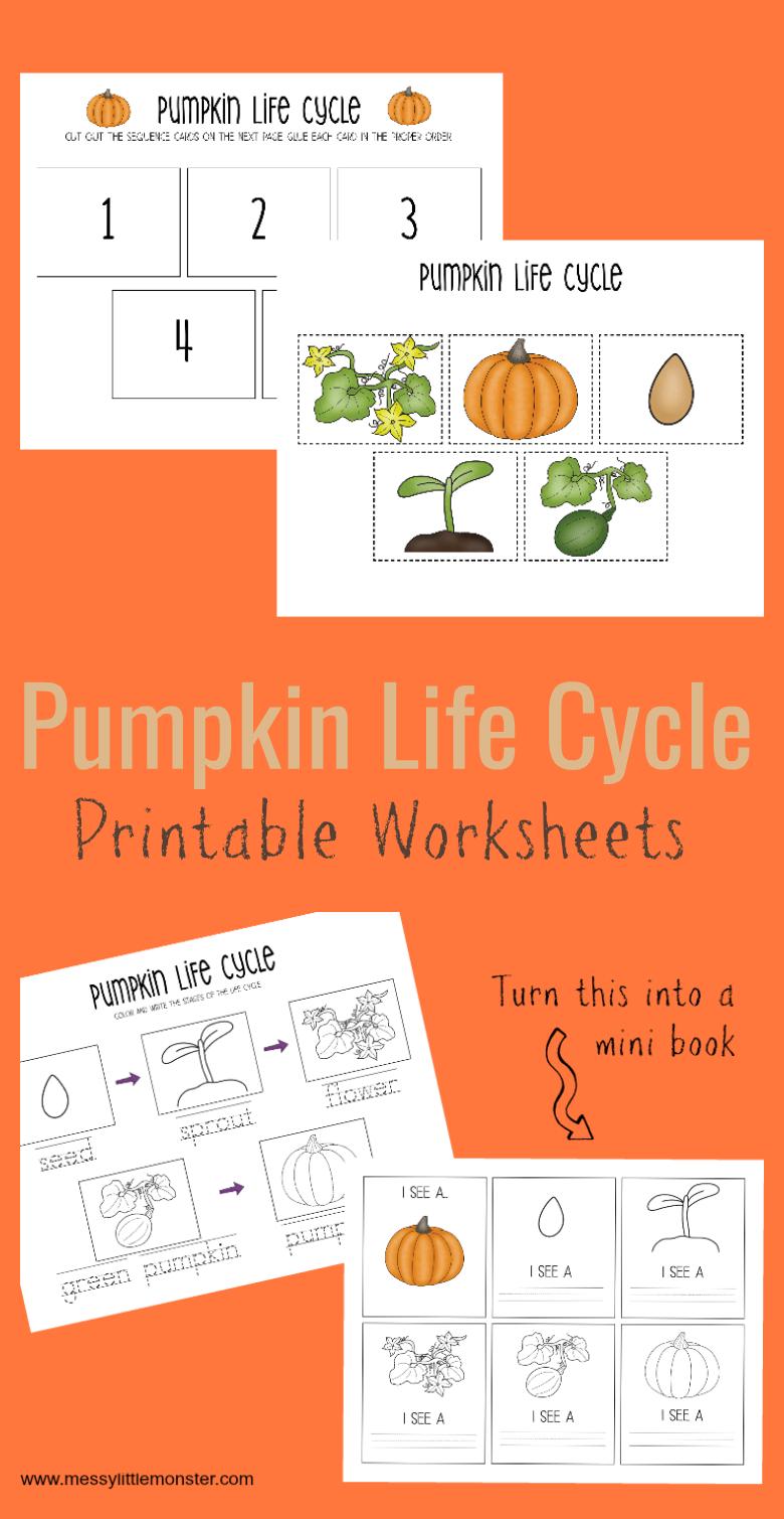 Printable Pumpkin Life Cycle Worksheets Pumpkin Life Cycle Pumpkin Learning Activities Pumpkin Life Cycle Kindergarten [ 1509 x 780 Pixel ]