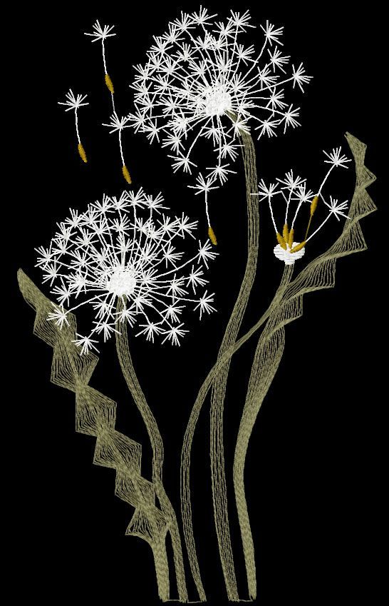 Dandelions Free Embroidery Design Flowers Free Machine Embroidery